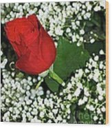 Rose And Baby's Breath Wood Print