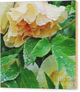 Rose And Leaves On A Rainy Day Wood Print