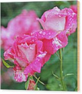 Rose Bonbons Wood Print by Rona Black