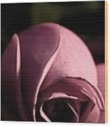 Rose Bud Wood Print