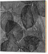 Rose Clippings Mural Wall - Black And White Wood Print