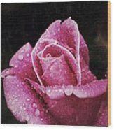 Rose Wood Print by Diane Reed