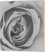 Rose Digital Oil Paint Wood Print
