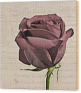 Rose En Variation - S02c3t3a Wood Print