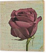 Rose En Variation - S23ct06 Wood Print