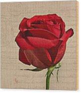 Rose En Variation - S2at03a Wood Print