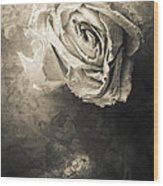 Rose From Another Day Wood Print