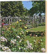 Rose Garden And Trellis Wood Print