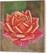 Rose Greeting Card Birthday Wood Print