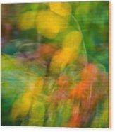 Rose Hip Wood Print