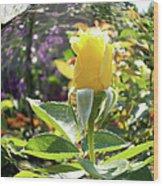 Rose In A Bubble Digital Art Wood Print
