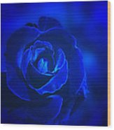 Rose In Blue Wood Print