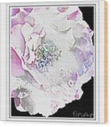 Rose In Pastels Wood Print