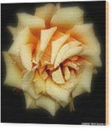 Rose Light Wood Print