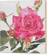 Watercolor Red Rose Margaret Wood Print