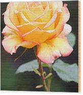 Rose Wood Print by Melisa Meyers