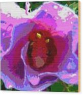 Rose Of Sharon Abstract Wood Print