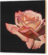 Rose On Black Background Wood Print