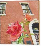 Rose On Brownstone Wood Print
