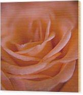 Rose Petals Wood Print by Kim Lagerhem