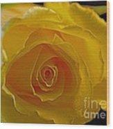 Rose -remeber Me Wood Print
