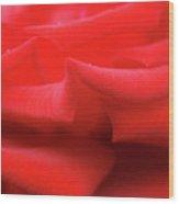 Rose (rosa 'veteran's Honour') Wood Print