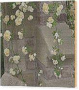 Rose Sprawling On Stone Wood Print