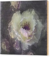 Rose Spray Wood Print by Jill Balsam