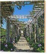 Rose Trellis Wood Print