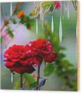 Rose Water Drops Wood Print