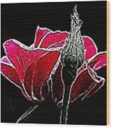 Rose With Friend Wood Print
