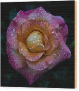 Rose With Rain Drops Wood Print