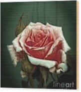 Rose20122 Wood Print
