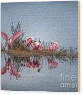 Roseate Spoonbills At Rest Wood Print