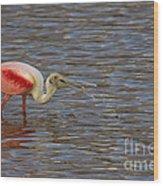 Roseatr Spoonbill   #4756 Wood Print