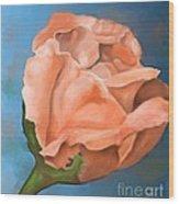 Rosebud Peaches And Cream Wood Print