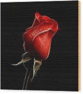 Rosebud Wood Print by Sandy Keeton
