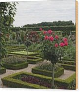 Roses And Cabbage -  Chateau Villandry Wood Print
