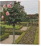 Roses And Salad - Chateau Villandry Wood Print
