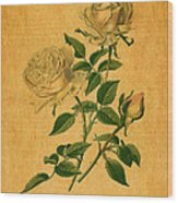 Roses Are Golden Wood Print