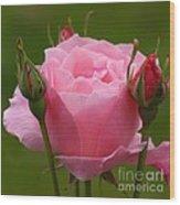 Roses Forever Wood Print