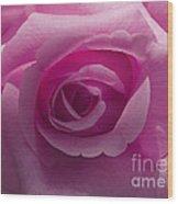 Roses Have Ruffles And Ridges Wood Print