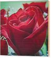 Roses In The Window Wood Print