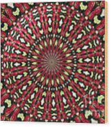 Roses Kaleidoscope Under Glass 21 Wood Print