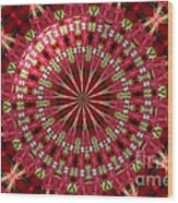 Roses Kaleidoscope Under Glass 30 Wood Print