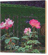 Roses Of South Pasadena 1 Wood Print by Kenneth James