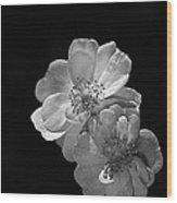 Roses On Black Wood Print