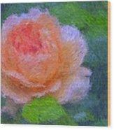 Roses Splendor Wood Print