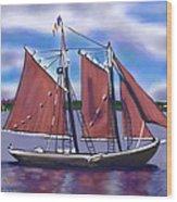 Roseway On Boston Harbor Wood Print