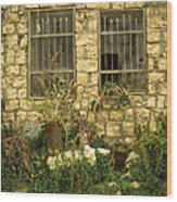 Rosh Pina Windows Wood Print